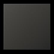 JUNG LS 990 Антрацит Клавиша 1-ая AL2990AN