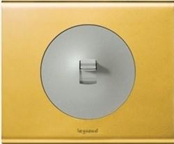 Рамка одноместная Legrand Celiane Золото - фото 6409