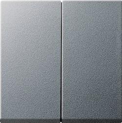 Двойные клавиши для клавишных и кнопочных выключателей Gira System 55 Алюминий - фото 6497