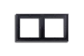 Рамка двойная, для горизонтального/вертикального монтажа Jung LS 990 Черный LS982sw