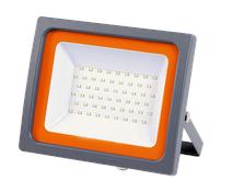 Jazzway Прожектор PFL-SC-30W 6500K IP65 (матовое стекло)