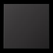 JUNG LS 990 Dark Клавиша 1-ая AL2990D