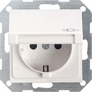 Розетка с откидной крышкой Белый Матовый Gira 045427