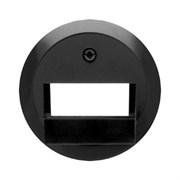 Центральная панель для UAE/E-DAT Design/Telekom розетка ISDN, Berker 1930/Glasserie/Palazzo цвет: Чёрный, с блеском