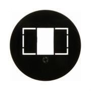Центральная панель для розетки TAE, Berker 1930/Glasserie/Palazzo цвет: Чёрный, с блеском